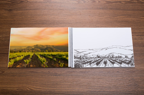Solis Winery Vineyard Sketch